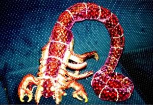 m_Zodiac Scorpio